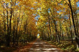 Nationally designated scenic roadways